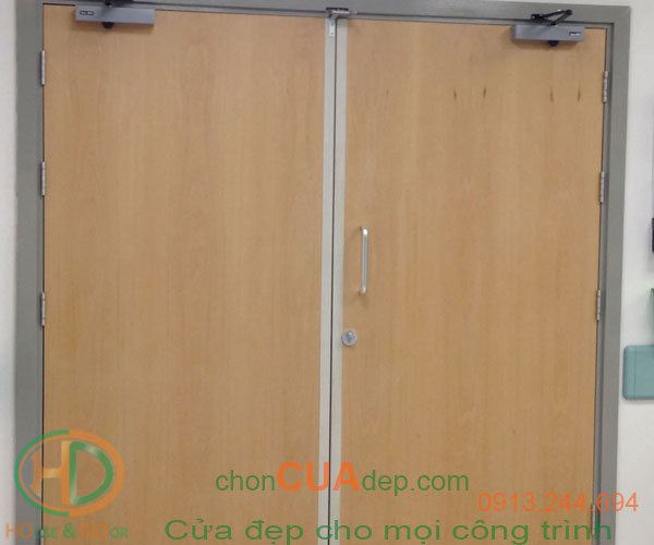cửa chống cháy vân gỗ 1